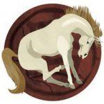 ไหว้พระธาตุประจำปีเกิด ปีมะเมีย ปีม้า